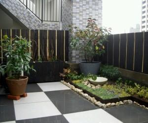 Tanaman taman minimalis
