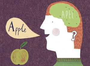 Keuntungan belajar bahasa bagi otak