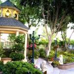 Yuk, Percantik Taman Rumah Anda!