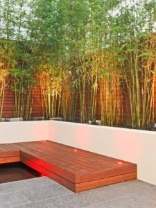 Taman bambu di rumah